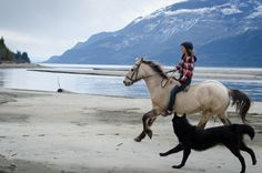 This photo is me to a tee - living on a farm next to a lake or the sea with mountains and forest surrounding it....a peaceful place where I can ride and connect with my horses and run with my dogs.  Love this pic!