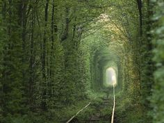 Tunnel of Love, Klevan, Ukraine.