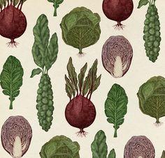 Pattern Design - Cabbage Pattern by Katie Scott - CoDesign Magazine Motifs Textiles, Textile Patterns, Textile Prints, Print Patterns, Food Patterns, Botanical Drawings, Botanical Art, Botanical Illustration, Illustration Art