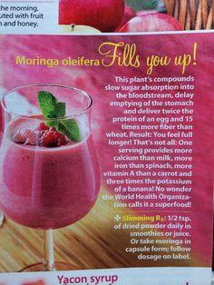 how to make moringa cream