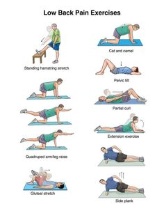 Best Lower Back Pain Exercises