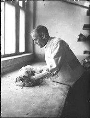 11-13-1946  Bakker in de vorige eeuw, deeg kneden met de handen.