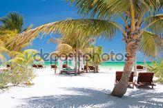 Mexico I Playa Del Carmen I Cancun I Tulum I Maya I Chichen Itza I Carribean Sea I Cenote I
