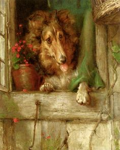 A Collie in a Window by Philip Eustace Stretton | Art Posters & Prints #yesterdayspaintingstoday