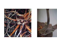 Moodboard: Vera van het Hof.   Images: Bloom