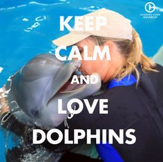 Keep calm and love dolphins!