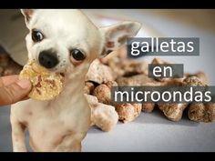 COMO HACER GALLETAS PARA PERROS EN MICROONDAS (sin horno!) ★ PetDarling Golosinas 3 - YouTube