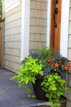 Featured - Sundays at Home Link Party - this fabulous shade container. Come by now & link up - we are waiting for you!!