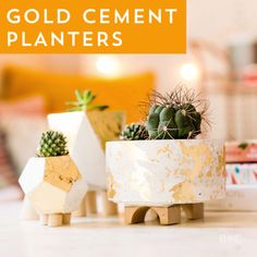 Learn how to make your own set of gold cement planters with this easy home decor DIY project video tutorial.