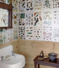 "Rip pages out of old biology books to make some <a href=""http://www.countryliving.com/home-design/house-tours/g1468/donna-and-paul-frank-new-york-farmhouse/"">eye-catching wallpaper</a>. All it takes is an old book, glue, and a polyurethane sealant."