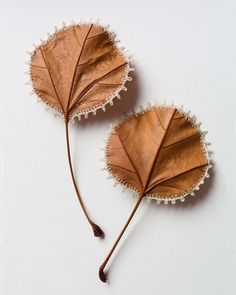 A leaf pair that will be part of a new piece of work titled 'Collection (Two by Two)' going on show with at the Affordable Art Fair, Stand London Hampstead June Embroidery Leaf, Crochet Leaves, Dry Leaf, Crochet Art, Leaf Art, Affordable Art, Contemporary Artists, Autumn Leaves, Incense
