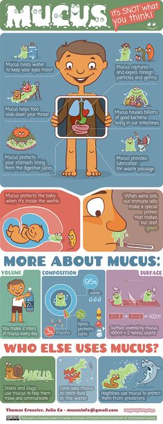 Mucus, it's Snot What You Think! #infographic #Mucus #Health
