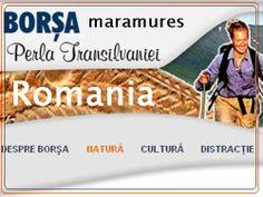 BUN VENIT LA ROCK CLUB BORSA MARAMURES TRANSILVANIA ROMANIA _ #!) _ PATURI_ APLICATII SI REZERVARI LA PRIMARIA BORSA MARAMURES Rock Club, Art Pariétal, Art Rupestre, Paul Newman, Expressions, John Paul, Summer Months, Watch V, Romania