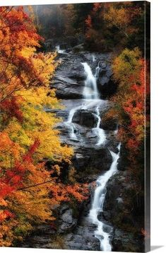 A waterfall surrounded by trees in vibrant fall colors. Cute Fall Wallpaper, Waterfall, Trees, Vibrant, Canvas Prints, Wallpapers, Colors, Outdoor, Outdoors