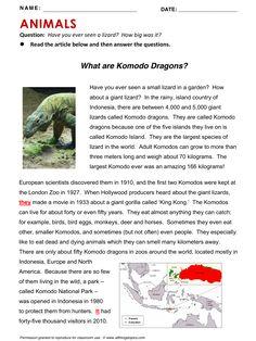 Animals and Birds, English, Learning English, Vocabulary, ESL, English Phrases, http://www.allthingstopics.com/animals-and-birds.html