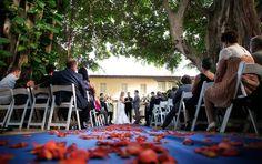 The Addison wedding