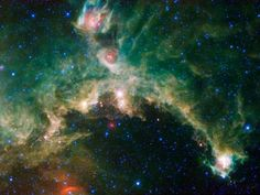 The Seagull nebula, seen in this infrared mosaic from NASA's Wide-field Infrared Survey Explorer, or WISE, draws its common name from it resemblance to a gull in flight.