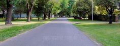 Por estas calles volvía de mis clases de guitarra, o volvía de la secundaria… pasado el tiempo.. me refugiaba en estos lugares cuando necesitaba hallar respuestas… Camino a casa en bici, caminando, en moto y hasta en auto siempre iba por estas hermosas calles en vez de seguir por la ruta porque refrescaban mi alma… Cada vez que paso por aquí es la misma sensación… renace mi alma y me pregunto... http://www.coolrosario.com.ar/por-estas-calles.html