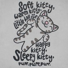 Camiseta BIG BANG THEORY Soft Kitty Song