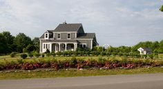 Flower Carpet Pink Supreme thrive in front of this Coastal Maine home