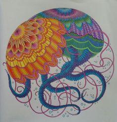 Jellyfish From Tropical Wonderland