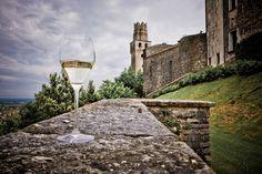 Non solo grandi città d'arte, il Veneto offre ottimi itinerari enogastronomici tra paesaggi autentici. Ecco a voi la strada del Prosecco - Castello di San Salvatore, Susegana (foto di Roberta De Min)
