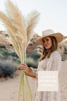 Luxe B Pampas Grass is these days the main on-line market for Pampas Grass.We supply a big number of Pampas sorts in herbal color, bleach white, crimson and different spell binding colours. We're recognized for high quality handpacked pampas this is delivered immediately on your door. Best for your own home decor, any match particularly boho marriage ceremony decor. These days we send anyplace in america and Canada. @luxebpampasgrasswww.luxebpampasgrass.com#pampasgrass #driedpampasgrass #driedflowers #bohowedding