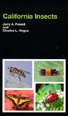 California Insects (California Natural History Guides) by Jerry A. Powell, http://www.amazon.com/dp/0520037820/ref=cm_sw_r_pi_dp_uvyKsb055X6AT