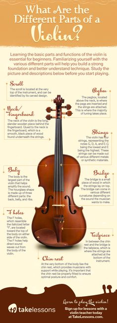 What Are the Different Parts of a Violin? [Infographic]: http://takelessons.com/blog/parts-of-a-violin-z08?utm_source=social&utm_medium=blog&utm_campaign=pinterest