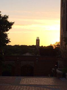 KU Campanile at sunset