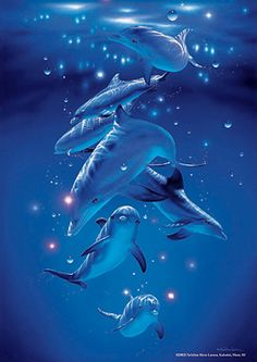 Group of Dolphins. Pink River Dolphin, Dolphin Art, Orcas, Dolphins Animal, Bottlenose Dolphin, Mermaids And Mermen, Animals Of The World, Ocean Life, Funny Animal Pictures