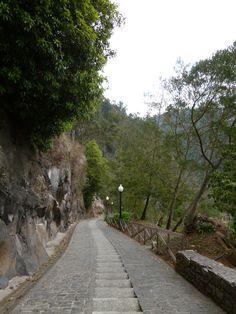 Monte, Madeira Portugal (Luglio)