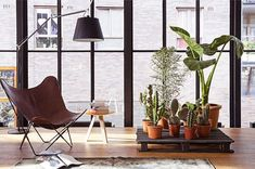 Plant stand out of shipping crates.Upcycling Inspiration: 6 DIY Decor Ideas using Shipping Pallets. Indoor Furniture Design, Pallet Furniture, Dining Furniture, Garden Furniture, Antique Furniture, Furniture Ideas, Modern Furniture, Leather Butterfly Chair, Diy Plant Stand
