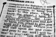 "Jeremiah 29:11 Favorite Bible verse!    This gives great comfort to me, knowing God directs our path. Especially when I feel lost & not doing what I ""think"" I should be doing!! - K"