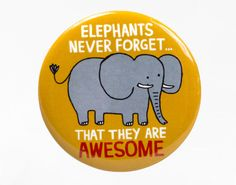Elephants never forget that they are awesome