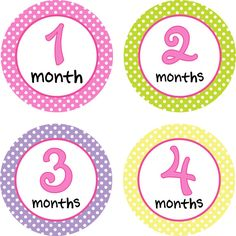 Baby Onsie Month Stickers Baby Monthly by LittleLillybugDesign, $11.00