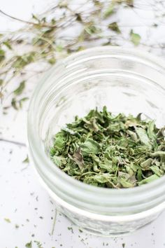 How to Dry Mint for Tea Leaves in 2 hours #tea #herbs