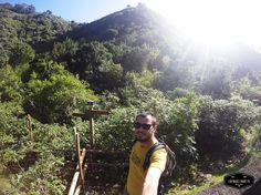 Hiking Tilos de Moya an eucalyptus forest in Gran Canaria Caminando por los Tilos de Moya un bosque de eucaliptos en Gran Canaria