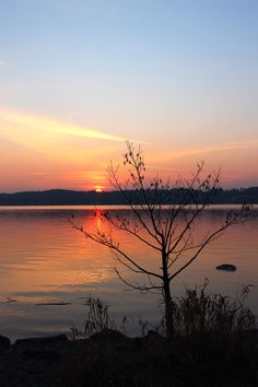 Sunset Water Nature Tranquility Beauty In Nature Scenics Reflection Sky Silhouette Tranquil Scene Orange Color No People Outdoors Lake Starnbergersee Bayern Bayern Germany See Lake View