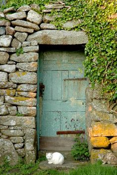 old green door.  stone.  ivy.  cat.  perfect.