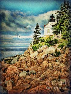 Bass Harbor Acadia NP Digital Art by Lianne Schneider #acadianationalpark #fineartpainting #lianneschneider