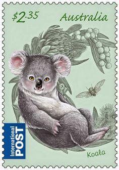 Selo de coala da Austrália, marsupiais herbívoros.
