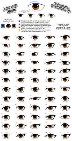Anime eye styles by PinkFireFly Drawing Eyes, Manga Drawing, Anatomy Drawing, Drawing Art, Drawing Face Shapes, Drawing Body Proportions, Drawing Anime Bodies, Eye Anatomy, Drawing Female Body