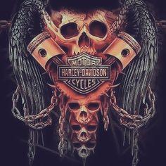 Harley Davidson News – Harley Davidson Bike Pics Harley Davidson Quotes, Harley Davidson Tattoos, Harley Davidson Wallpaper, Classic Harley Davidson, Harley Davidson Sportster, Harley Davidson Street, Harley Tattoos, Biker Tattoos, Skull Tattoos