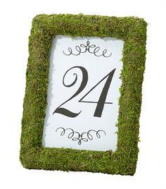Cornice Segnatavolo Prato !0x15 Crea un ambiente unico alla reception con questa cornice di muschio su ogni tavolo. Può essere utilizzato per contenere il numero tavolo o una foto o il menu misura  10x15 cm - PARTY E FESTE, Allestimenti, Tavoli e sedie - Tavoli e sedie - http://www.dettagliperfetti.com/tavoli-e-sedie/5885-Cornice-Segnatavolo-Prato.html -    Questo albero ornamentale in metallo dal colore oro puo' essere utilizzato in diversi   modi: come centrotaola o per abbellire un buffet…
