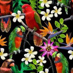 oiseau tropical: seamless des oiseaux exotiques et de belles fleurs Illustration