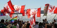 Canadian Cannabis Is Making Its Way into Italys Medical Marijuana Market