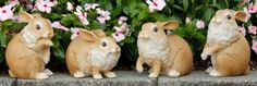 Garden Bunnies Set of 4