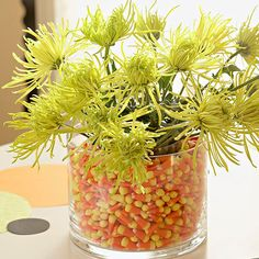 Candy Corn Jar with Mums ~ Are those spiders jumping out of that candy jar? Not quite. A spray of chartreuse spider mums tops a jar of candy corn. Insert a smaller, waterproof container filled with florist's foam and flowers inside a glass vase, then surround with candy.