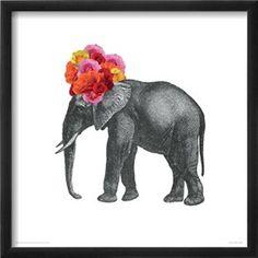 Elephant Impressão giclée por John Murphy na AllPosters.com.br
